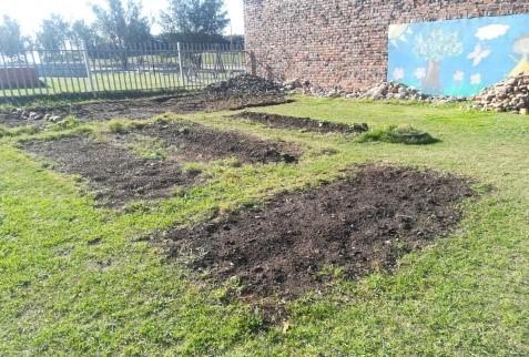 Jodhua Project Garden June 2019